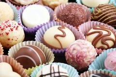 Molte praline del cioccolato di variet?, pralina gastronomica del cioccolato della confetteria belga immagini stock