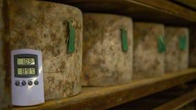 Molte ruote del formaggio che sono immagazzinate in una cattedrale del formaggio Immagini Stock