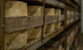 Molte ruote del formaggio che sono immagazzinate in una cattedrale del formaggio Fotografia Stock