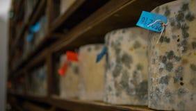 Molte ruote del formaggio che sono immagazzinate in una cattedrale del formaggio Fotografia Stock Libera da Diritti