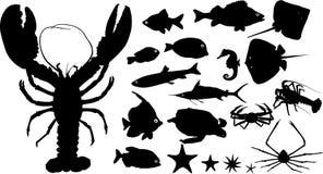 Molte siluette degli animali dell'acqua Fotografia Stock