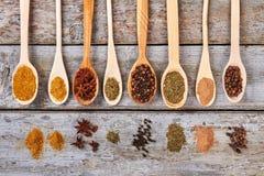 Molte spezie differenti in cucchiai fatti a mano di legno Fotografia Stock