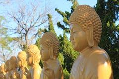 Molte statue di Buddha, Chen Tien Temple - Foz fa Iguaçu, Brasile immagini stock libere da diritti