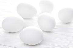 Molte uova bianche Fotografia Stock