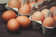 Molte uova del pollo Fotografie Stock Libere da Diritti
