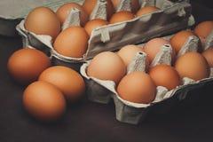 Molte uova del pollo Fotografia Stock