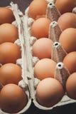 Molte uova del pollo Immagine Stock Libera da Diritti