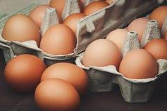 Molte uova del pollo Immagini Stock Libere da Diritti