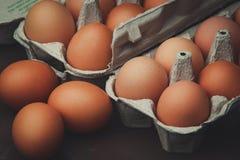 Molte uova del pollo Immagine Stock