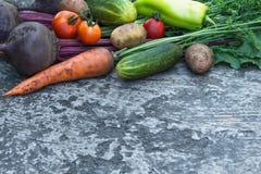 Molte verdure chiudono il fondo dell'agricoltura Fotografie Stock Libere da Diritti