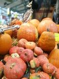 Molte zucche su un mercato degli agricoltori immagini stock