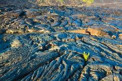 Molten cooled lava Stock Photos