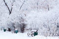 Molti alberi sotto neve Fotografia Stock Libera da Diritti