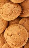 Molti biscotti di farina d'avena deliziosi, Fotografia Stock Libera da Diritti