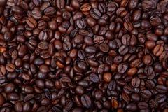 Molti chicchi di caffè scuri Immagine Stock