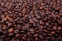 Molti chicchi di caffè scuri Immagini Stock