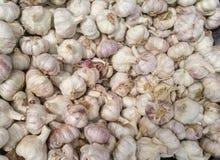 Molti chiodi di garofano di aglio freschi al mercato Fotografia Stock Libera da Diritti