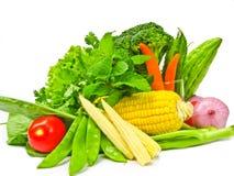 Molti colore delle verdure Fotografia Stock Libera da Diritti