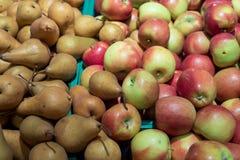 Molti frutti gradiscono le mele e le pere Immagine Stock
