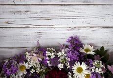 Molti generi differenti di fiori: flox, camomilla, peonia, campane immagini stock libere da diritti