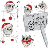 Molti gufi di divertimento sui rami Insieme del gufo multicolore Uccello e compressa La società ad un partito Cartolina di Natale Fotografia Stock Libera da Diritti