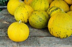 Molti meloni gialli su una tabella Fotografie Stock Libere da Diritti
