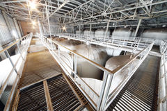 Molti metal le cisterne nella fabbrica di Ochakovo immagini stock