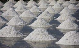 Molti mucchio di sale nella vaschetta del sale. Fotografia Stock