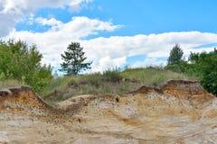 Molti nidi dei sorsi nel canyon sotto forma di depres Fotografie Stock