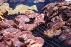 Molti pezzi di generi differenti di carne fotografia stock