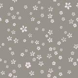 Molti piccoli fiori semplici con il centro dell'oro su fondo cinereo grigio illustrazione di stock