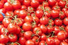 Molti pomodori ciliegia maturi rossi sulla fine del mercato su su sunn Immagini Stock Libere da Diritti