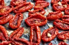 Molti pomodori rossi secchi con le spezie su una superficie scura Fine secca del fondo di struttura dei pomodori su Fotografie Stock Libere da Diritti