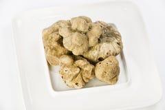 Molti tartufi bianchi da Piemonte sul piatto ceramico Fotografia Stock