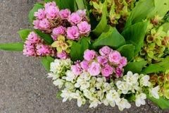 Molti tipi di fiori da vendere lungo la strada Immagine Stock Libera da Diritti