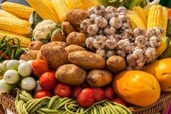 Molti tipi di verdure Fotografie Stock