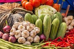 Molti tipi di verdure Fotografia Stock Libera da Diritti