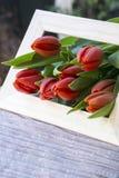 Molti tulipani rossi nel telaio di legno fotografia stock
