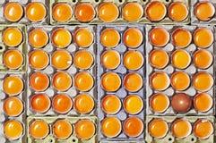 Molti uova ed un uovo unico senza rompersi fotografia stock