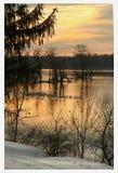 Moltitudine di gabbiani sul lago ghiacciato al tramonto Fotografie Stock