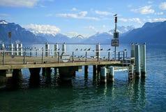 Moltitudine di gabbiani sul lago Lemano Immagine Stock Libera da Diritti