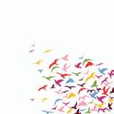 Moltitudine di uccelli royalty illustrazione gratis
