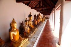 Molto buddha Fotografia Stock