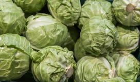 Molto cavolo a di mercato Ingrediente-cavoli dei cavoli background Cavolo fresco dal campo dell'azienda agricola Concetto vegetar Immagine Stock