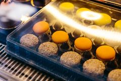 Molto genere di macaron dentro la chiara scatola con la riflessione leggera fotografie stock libere da diritti