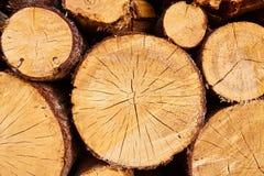 Molto legna da ardere immagini stock