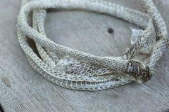 Molto lungamente pelle di serpente di spargimento bianca sul pavimento di legno fotografie stock libere da diritti