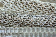 Molto lungamente pelle di serpente di spargimento bianca sul pavimento di legno fotografia stock
