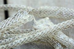 Molto lungamente pelle di serpente di spargimento bianca sul pavimento di legno immagini stock libere da diritti