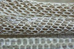 Molto lungamente pelle di serpente di spargimento bianca sul pavimento di legno fotografia stock libera da diritti